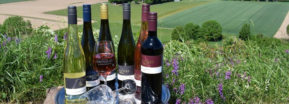 Weingut Borntaler Hof - Online Weinproben